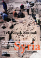 Tell Kosak Shamali: the archaeological investigations on the Upper Euphrates, Syria. v. 1:...