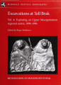 Excavations at Tell Brak. v. 4: Exploring an upper Mesopotamian regional centre, 1994-1996