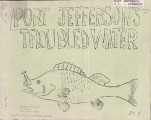 Port Jefferson's troubled waters