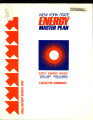 New York State energy master plan and long-range electric and gas report :final report March 1980